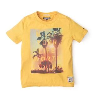Tommy camiseta niño 29,90
